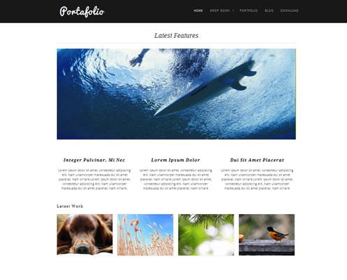 Theme Portafolio für WordPress
